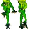 лягушка задумчивая