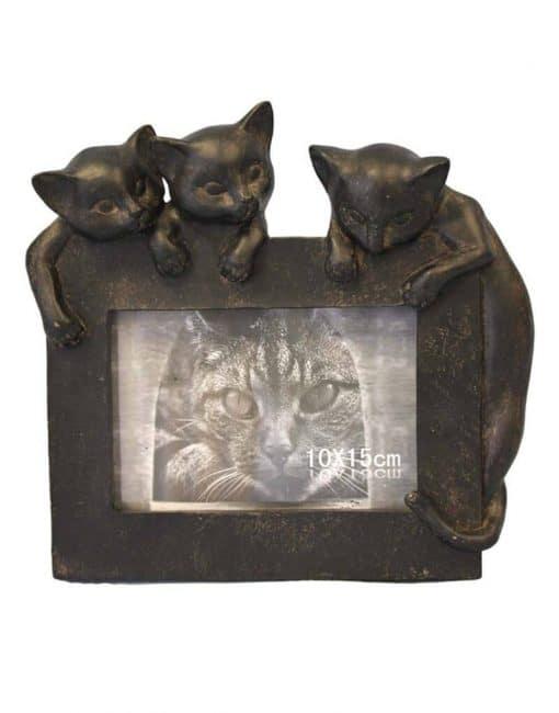 рамка для фотографий с кошками