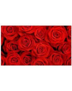 картина розы купить в минске