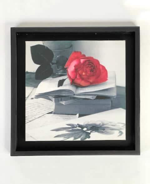 картина с розой
