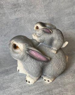 кролик садовый