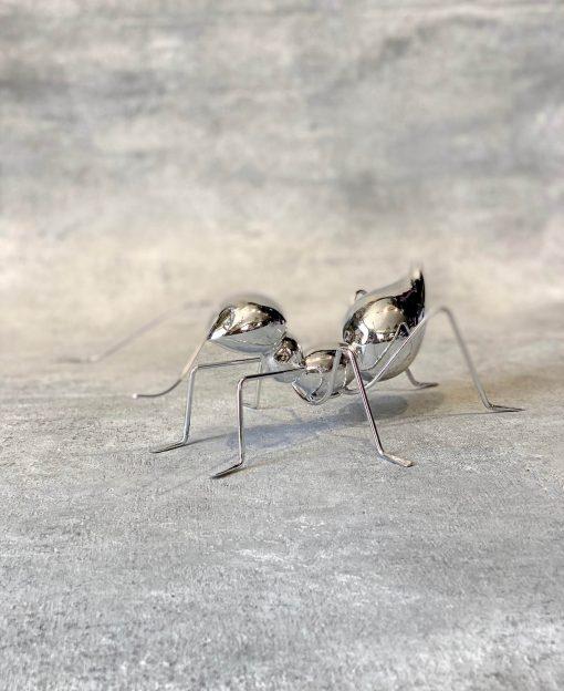муравей на комод