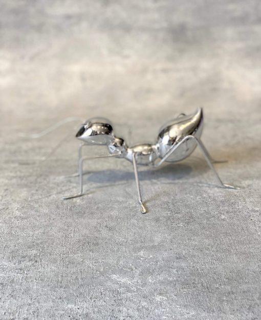 муравей в интерьере